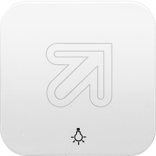 EGB Elegant Standard Wippe Symbol Licht reinweiß 90630003 / 92520003 ...